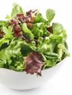 Image de Petite salade verte